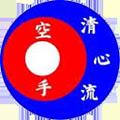 Seishin-Ryu Karate